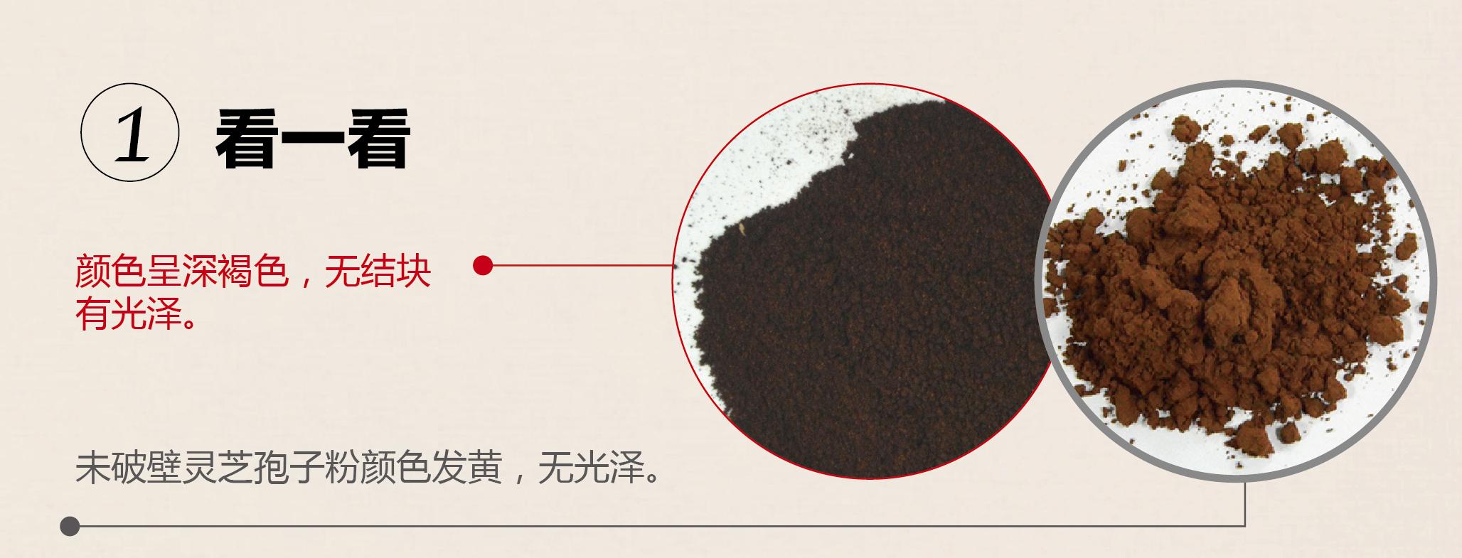 灵芝破壁孢子粉