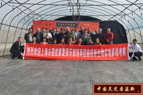 上海市癌症康复俱乐部各区会长 走进菇新灵芝