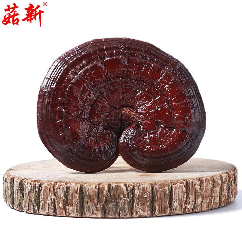 菇新 赤灵芝(韩芝) 500克/袋